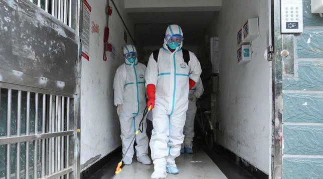 Coronavirus, gli Emirati Arabi confermano il loro primo caso