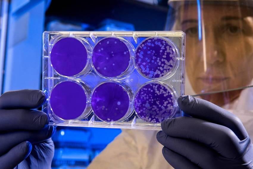Coronavirus, ultime notizie sul Covid-19 di oggi martedì 6 aprile