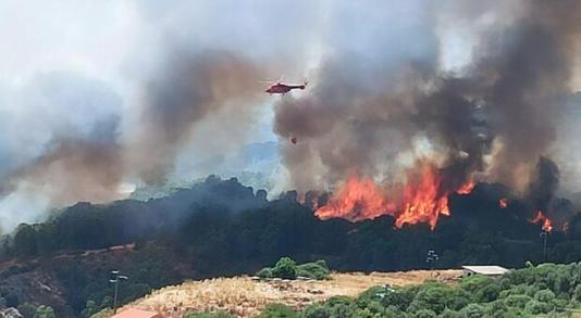 Incendi Sardegna : Rogo nell