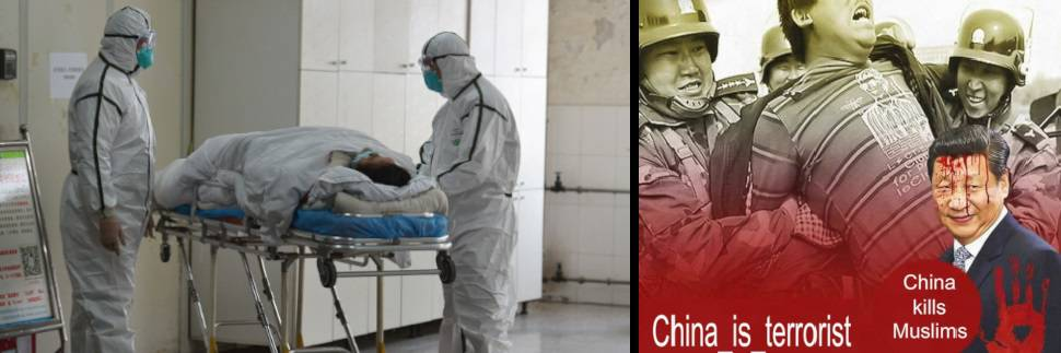 Una punizione contro la Cina! Gli islamici in festa per Coronavirus