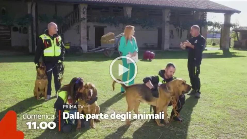 DALLA PARTE DEGLI ANIMALI RITORNA IN ONDA DOMENICA MATTINA ALLE ORE 11