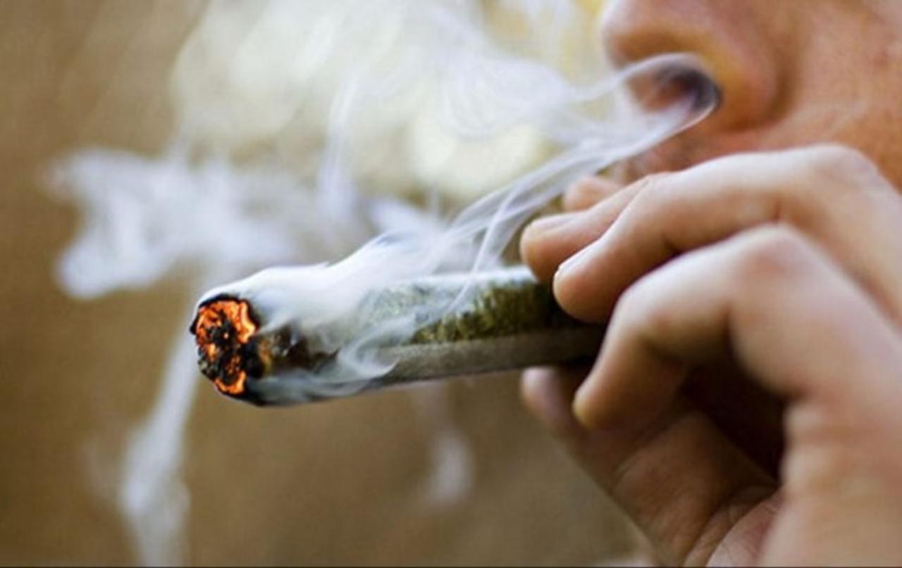 Legalizzare la cannabis : La proposta dei parlamentari per rilanciare l