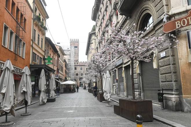 Coronavirus: Avvocato Luca Di Carlo, mi aiuti